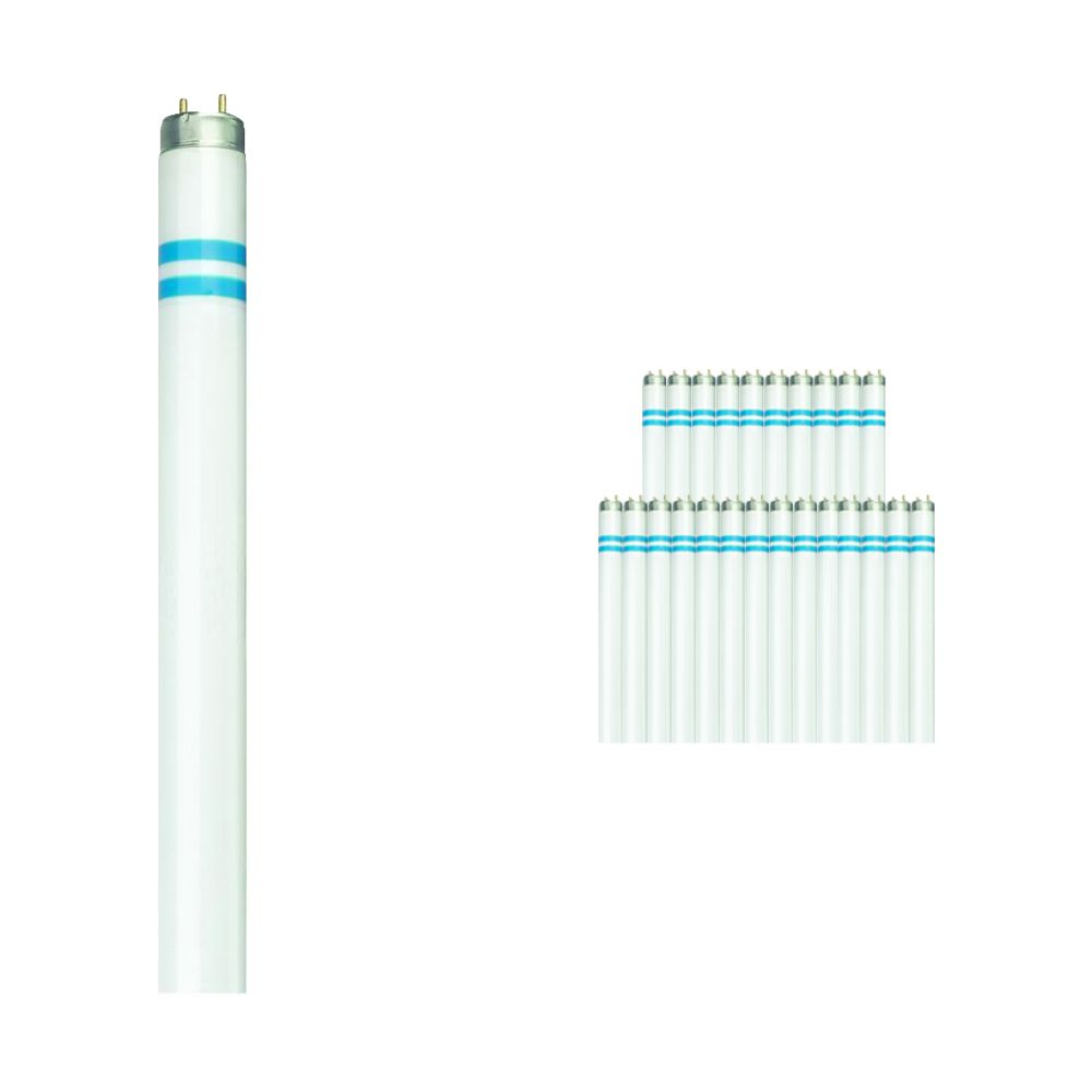 Fordelspakning 25x Philips TL-D Secura 58W 840 - 150cm (MASTER)