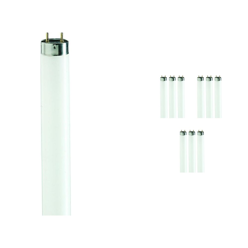 Fordelspakning 10x Philips TL-D 90 De Luxe 58W 965 - 150cm (MASTER)