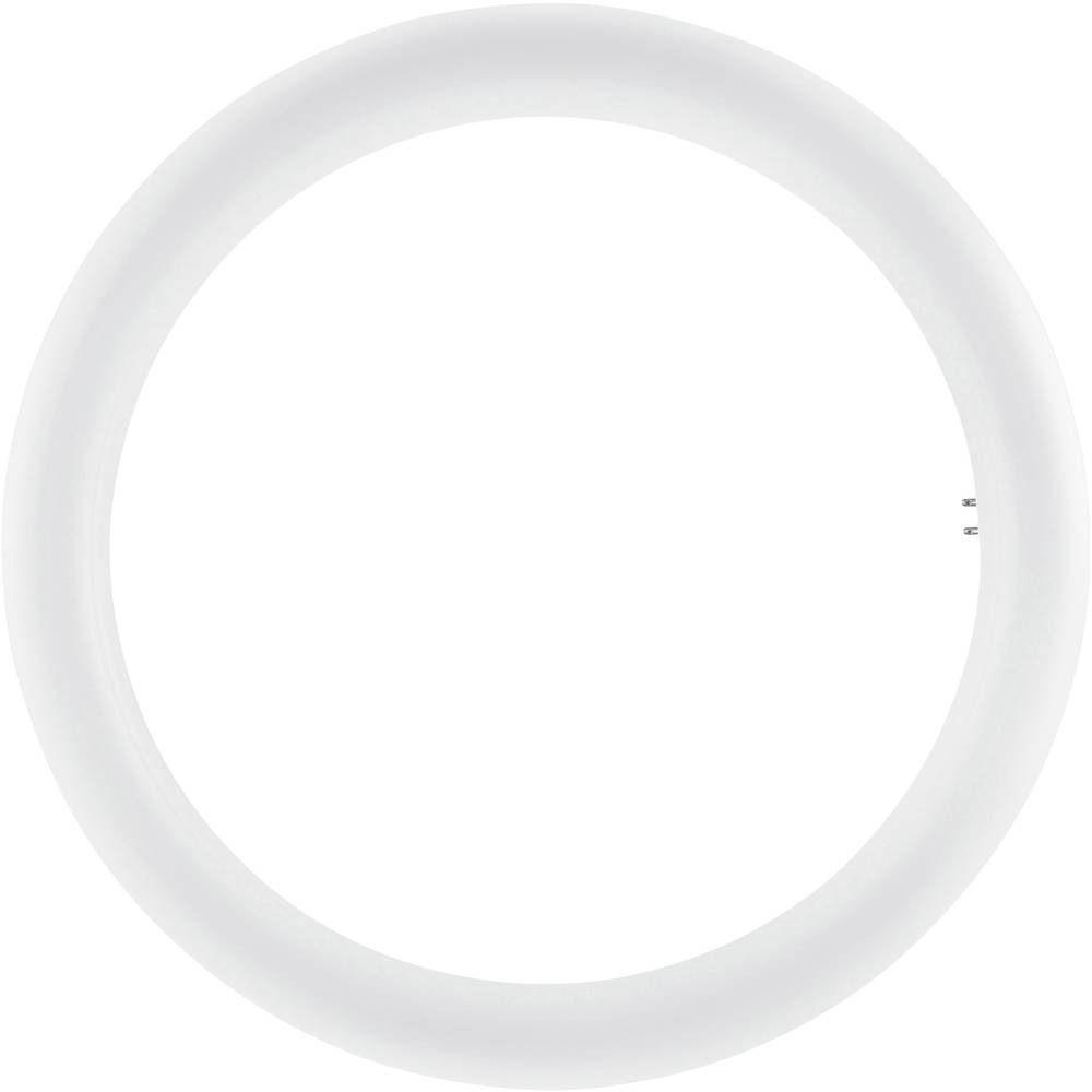 Osram SubstiTUBE T9 Circular EM MAINS G10Q 20W 840   kald hvit - erstatter 32W